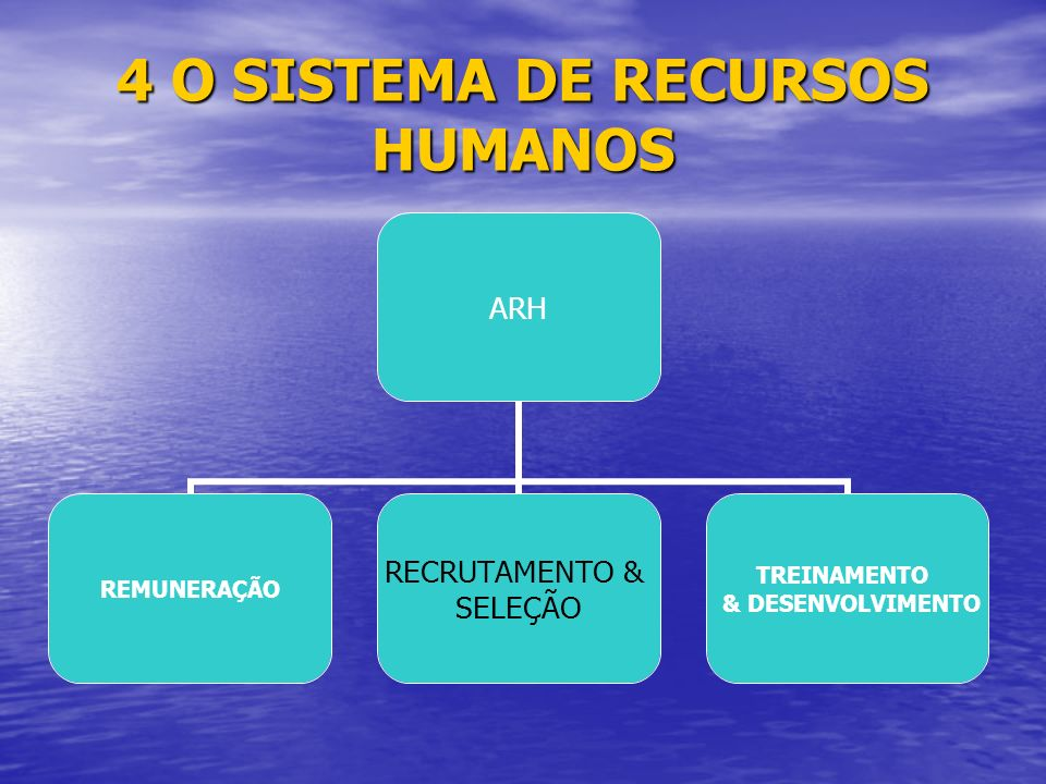 4 O SISTEMA DE RECURSOS HUMANOS