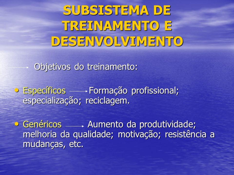 SUBSISTEMA DE TREINAMENTO E DESENVOLVIMENTO