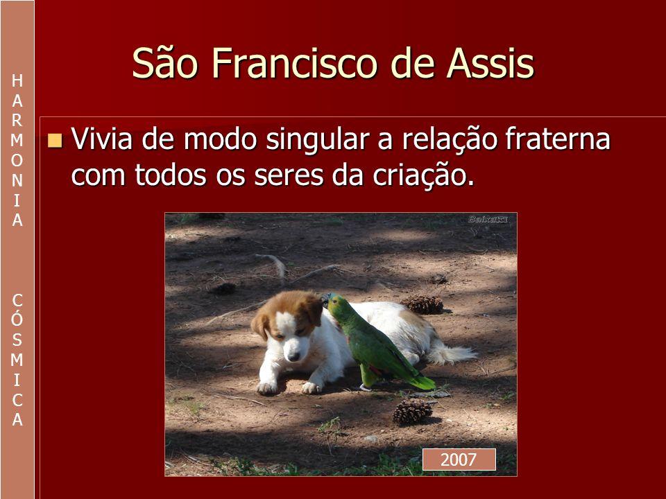 HA. R. M. O. N. I. C. Ó. S. São Francisco de Assis. Vivia de modo singular a relação fraterna com todos os seres da criação.