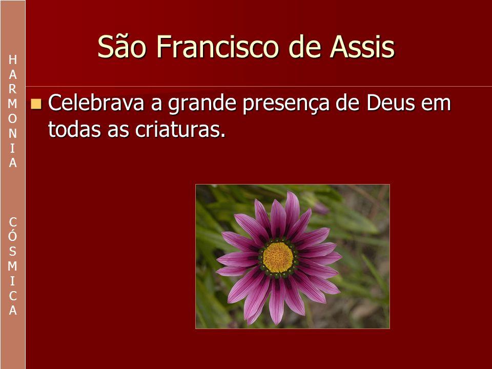 HA.R. M. O. N. I. C. Ó. S. São Francisco de Assis.