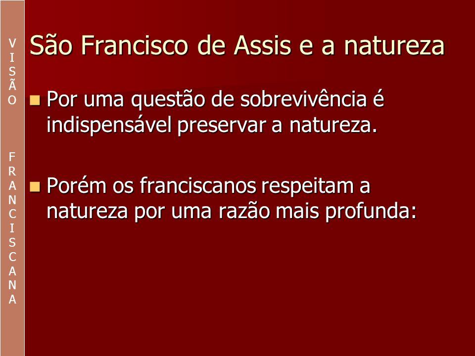 São Francisco de Assis e a natureza