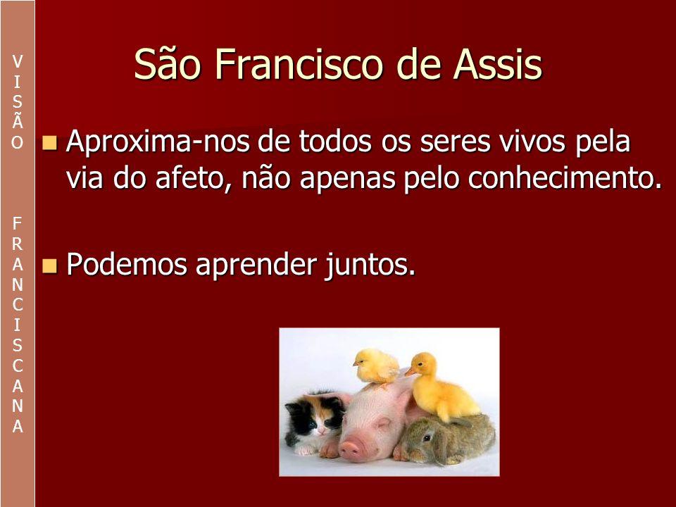VI. S. Ã. O. F. R. A. N. C. São Francisco de Assis. Aproxima-nos de todos os seres vivos pela via do afeto, não apenas pelo conhecimento.