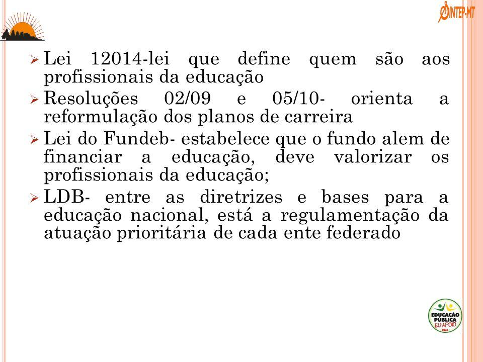Lei 12014-lei que define quem são aos profissionais da educação