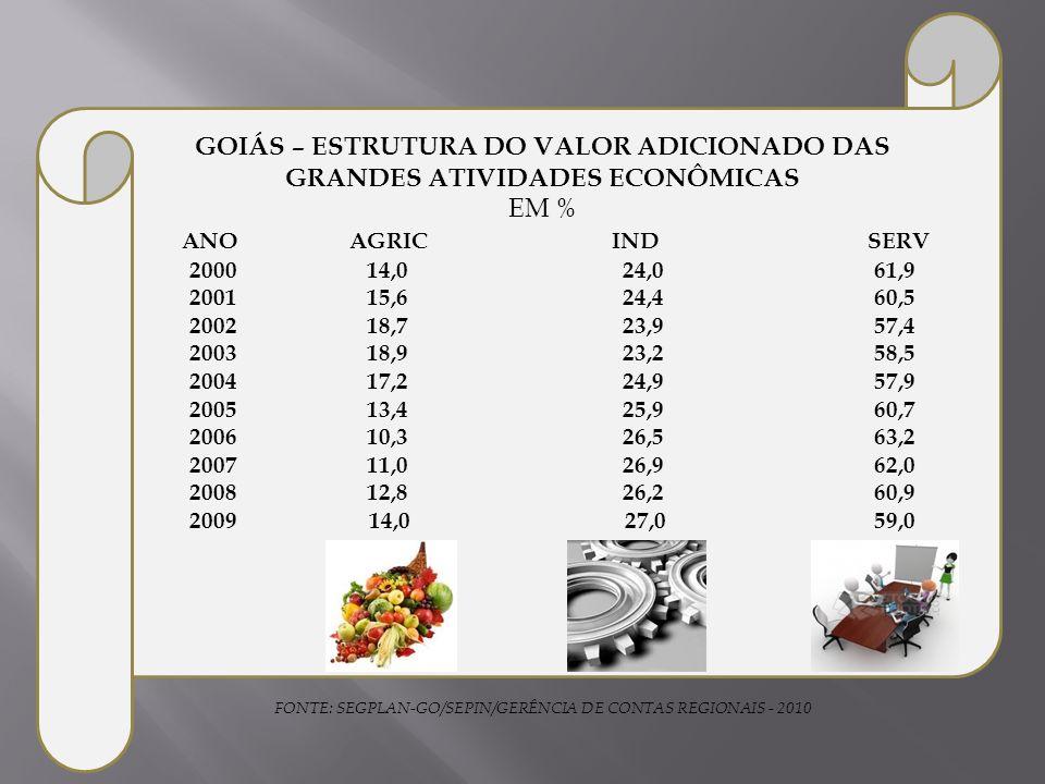 FONTE: SEGPLAN-GO/SEPIN/GERÊNCIA DE CONTAS REGIONAIS - 2010