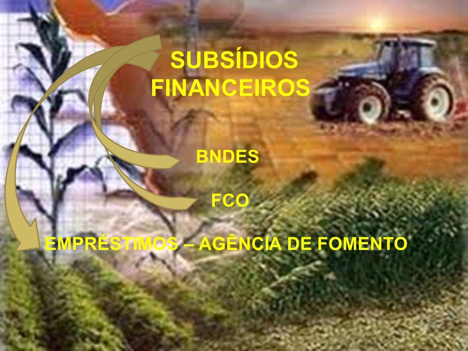 SUBSÍDIOS FINANCEIROS BNDES FCO EMPRÉSTIMOS – AGÊNCIA DE FOMENTO