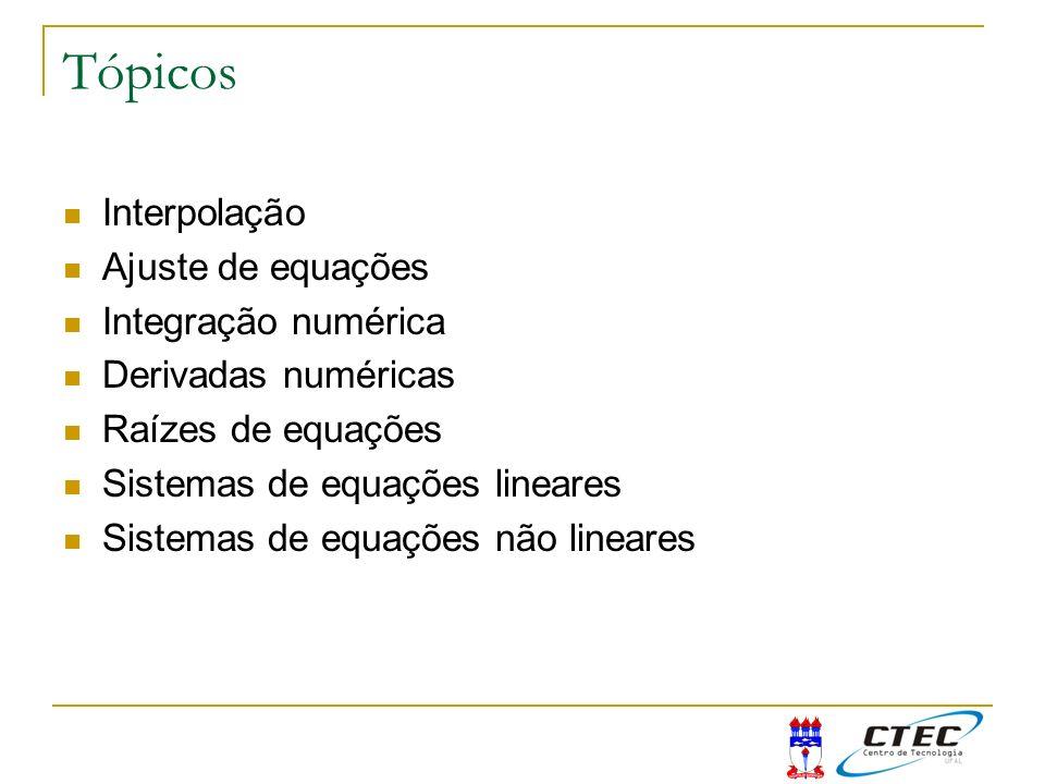 Tópicos Interpolação Ajuste de equações Integração numérica