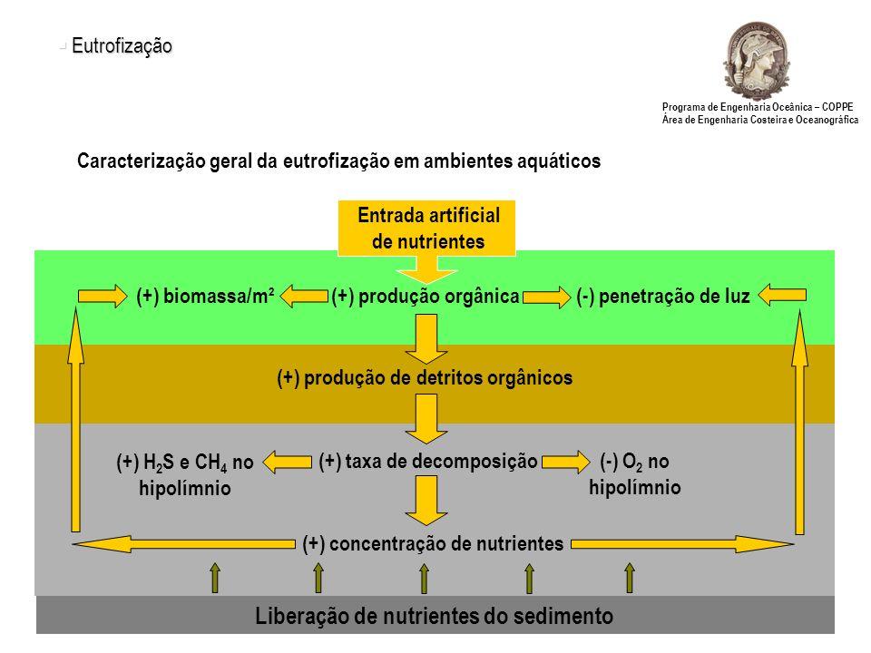 Liberação de nutrientes do sedimento