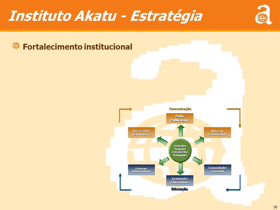 Instituto Akatu - Estratégia