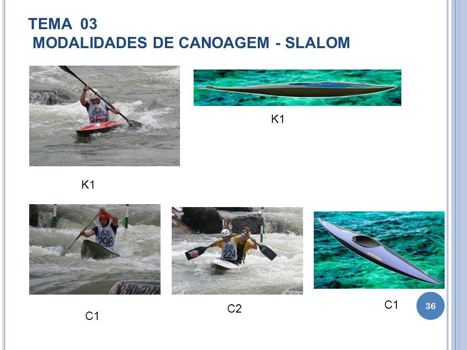 TEMA 03 MODALIDADES DE CANOAGEM - SLALOM
