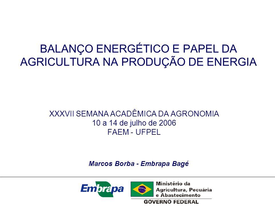 BALANÇO ENERGÉTICO E PAPEL DA AGRICULTURA NA PRODUÇÃO DE ENERGIA