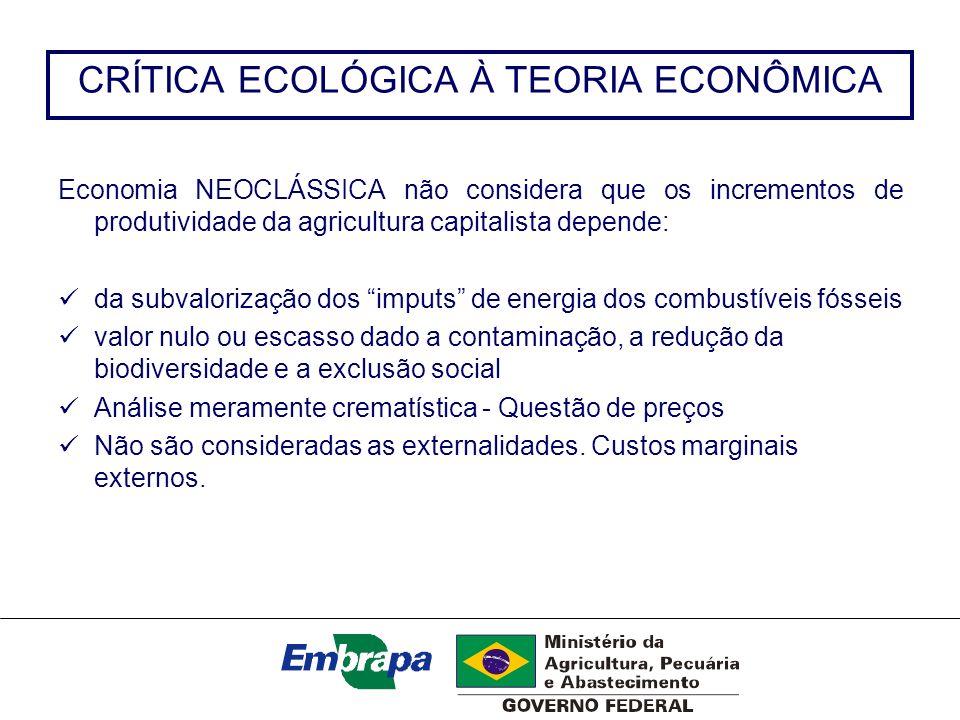 CRÍTICA ECOLÓGICA À TEORIA ECONÔMICA