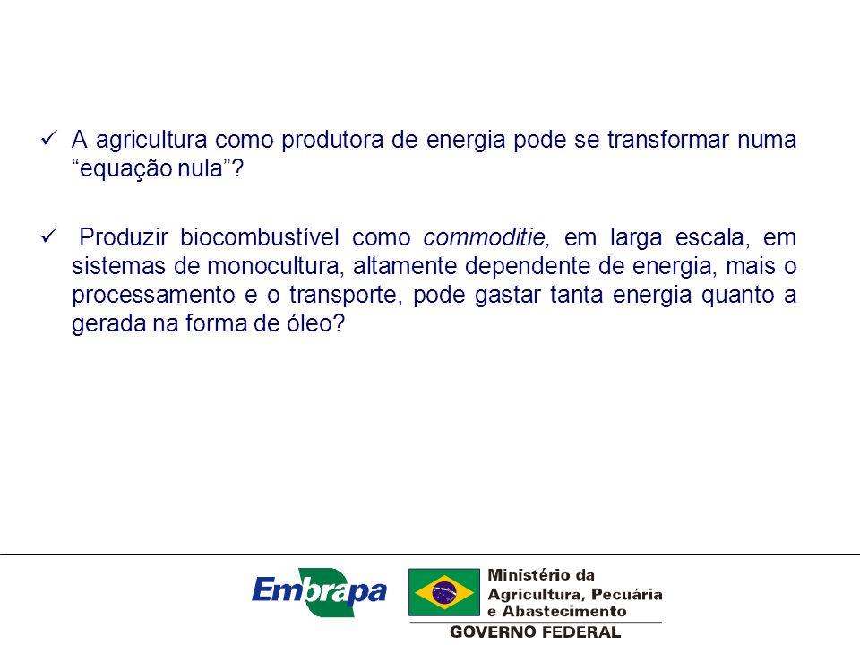 A agricultura como produtora de energia pode se transformar numa equação nula