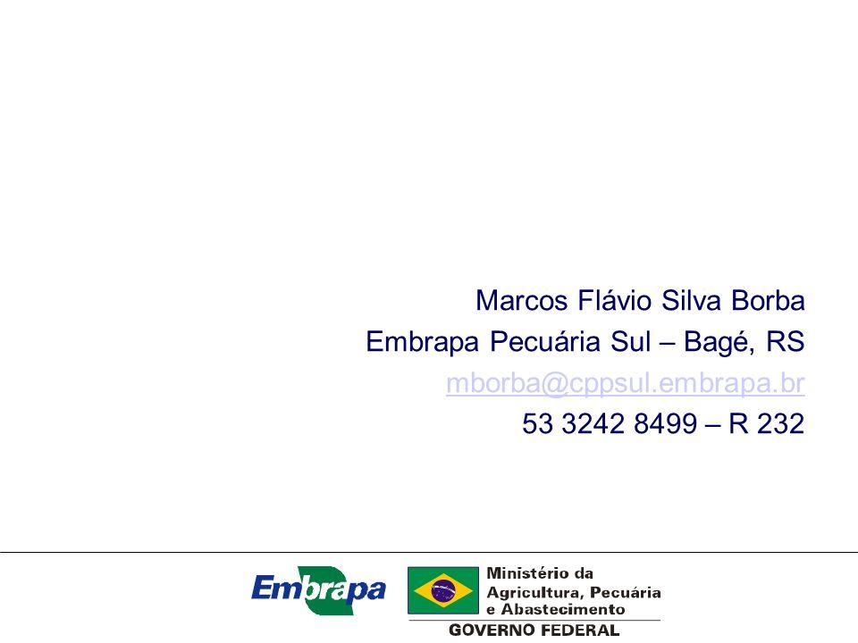 Marcos Flávio Silva Borba