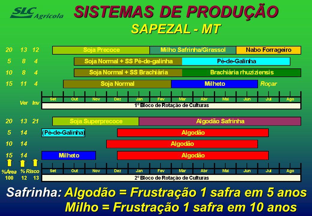 SISTEMAS DE PRODUÇÃO SAPEZAL - MT