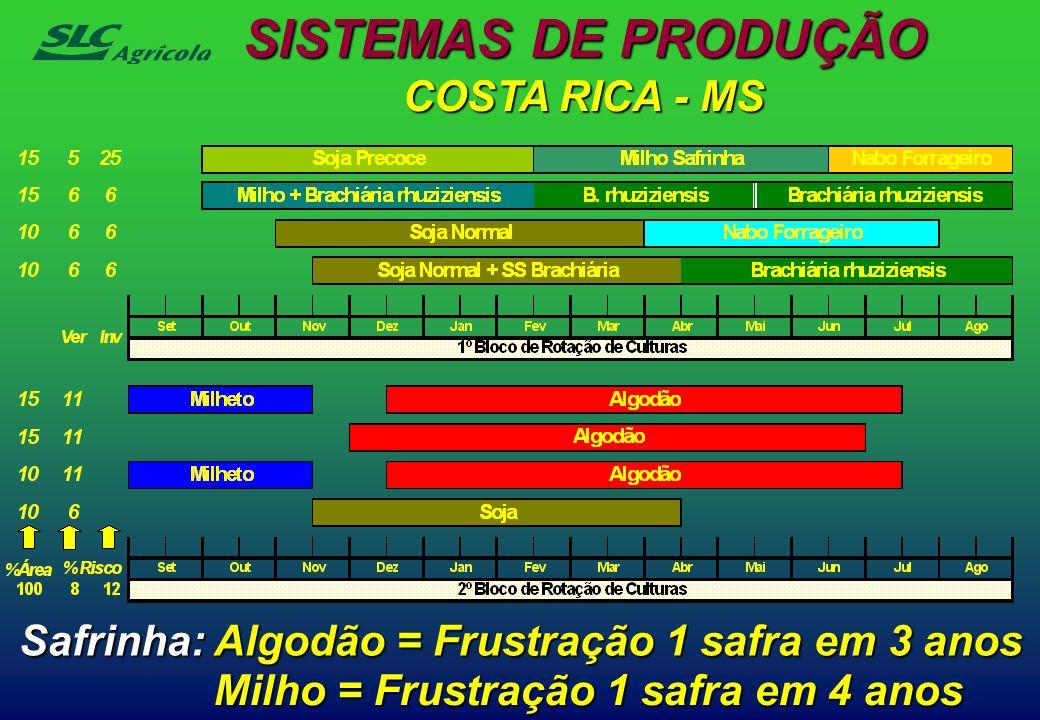 SISTEMAS DE PRODUÇÃO COSTA RICA - MS