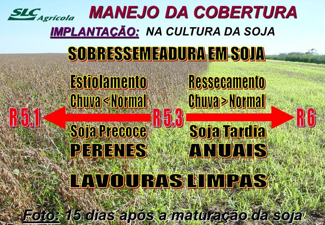 MANEJO DA COBERTURA R 5.1 R 5.3 R 6