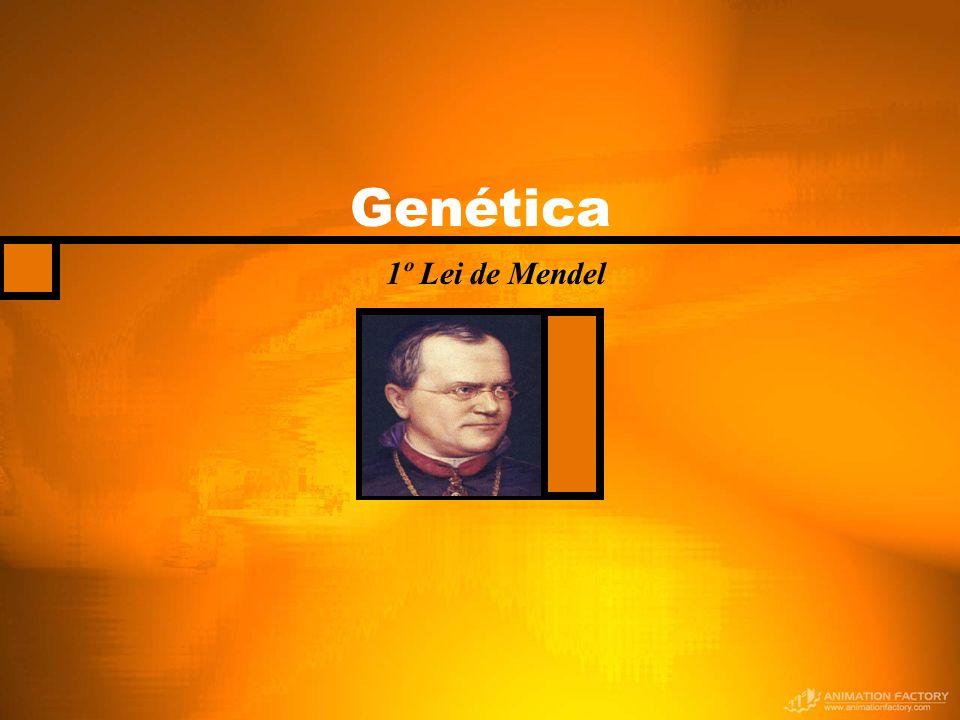 Genética 1º Lei de Mendel