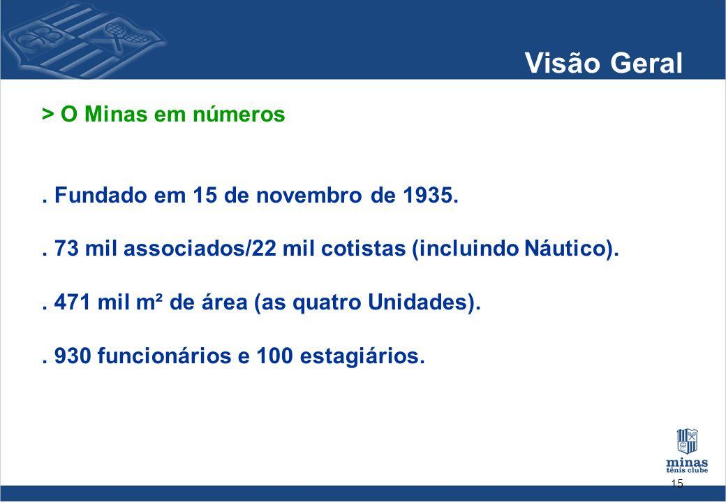 Visão Geral > O Minas em números