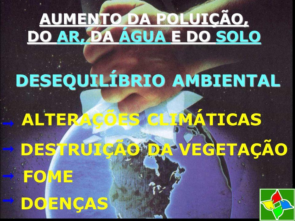 DESEQUILÍBRIO AMBIENTAL