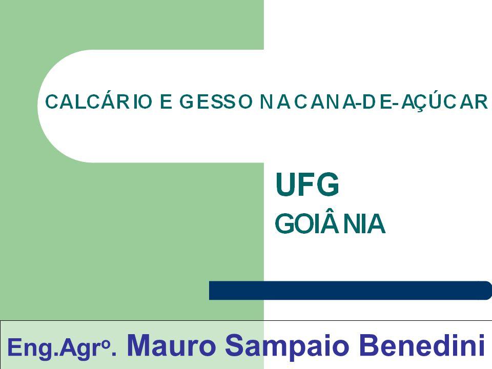 Eng.Agro. Mauro Sampaio Benedini