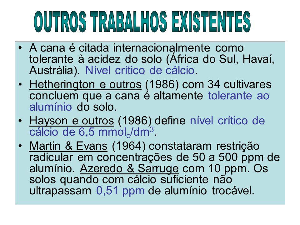 OUTROS TRABALHOS EXISTENTES
