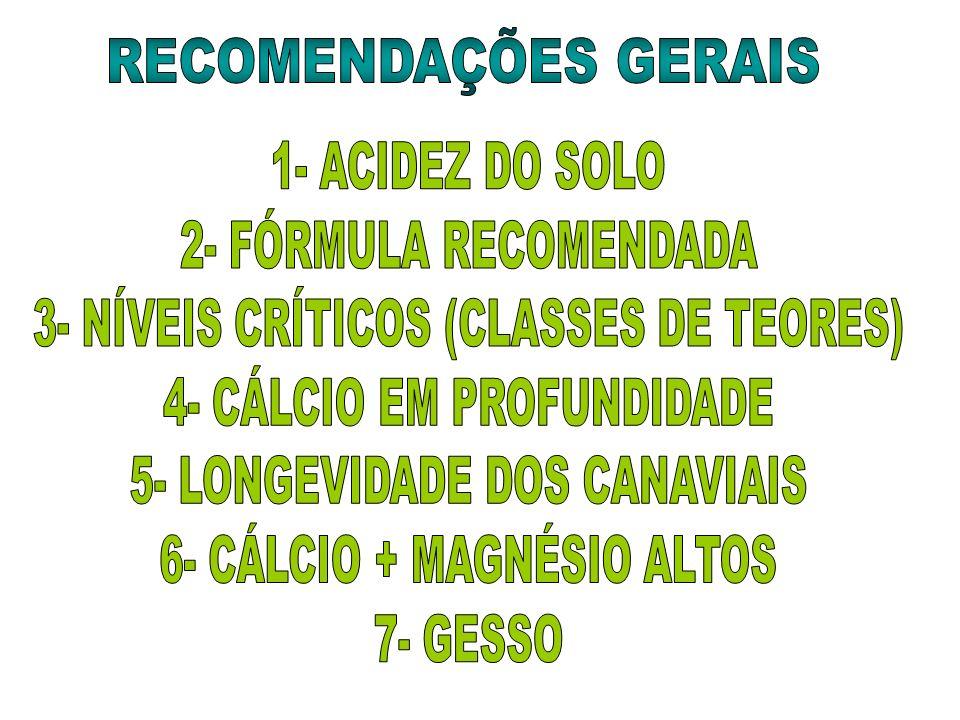 3- NÍVEIS CRÍTICOS (CLASSES DE TEORES) 4- CÁLCIO EM PROFUNDIDADE
