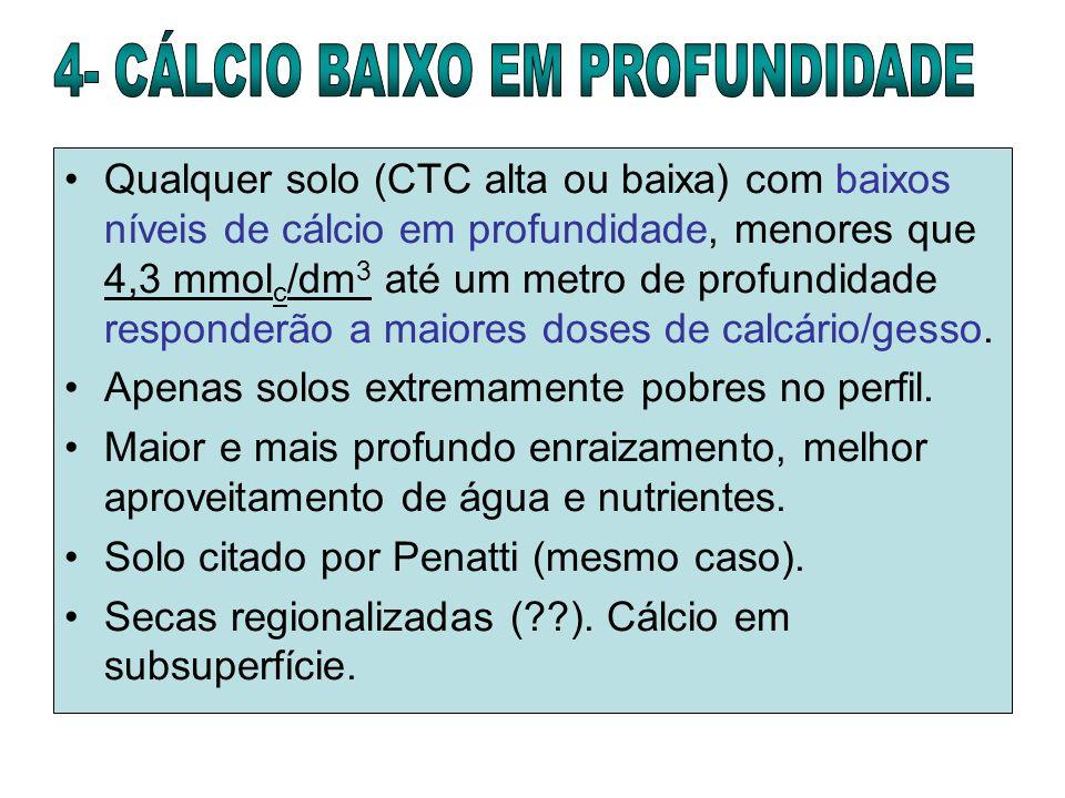 4- CÁLCIO BAIXO EM PROFUNDIDADE