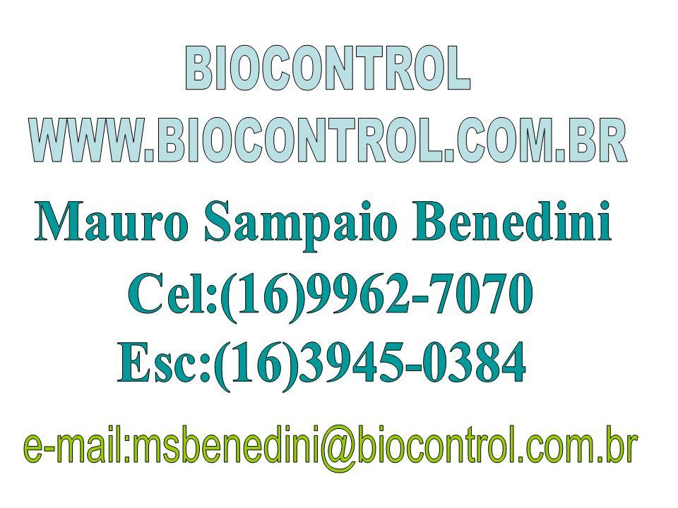 Mauro Sampaio Benedini
