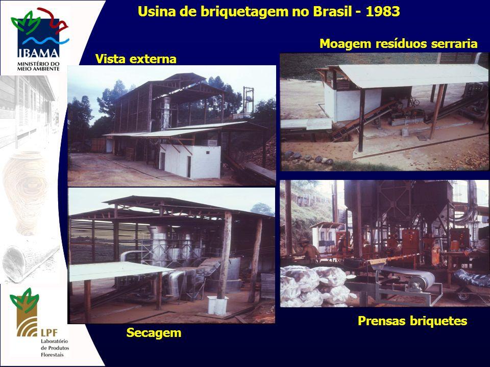Usina de briquetagem no Brasil - 1983