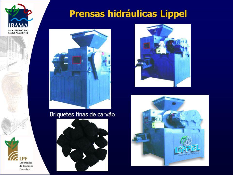 Prensas hidráulicas Lippel