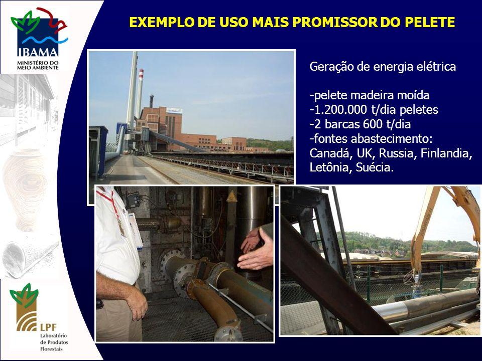 EXEMPLO DE USO MAIS PROMISSOR DO PELETE
