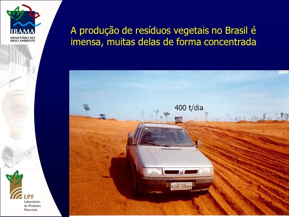 A produção de resíduos vegetais no Brasil é imensa, muitas delas de forma concentrada