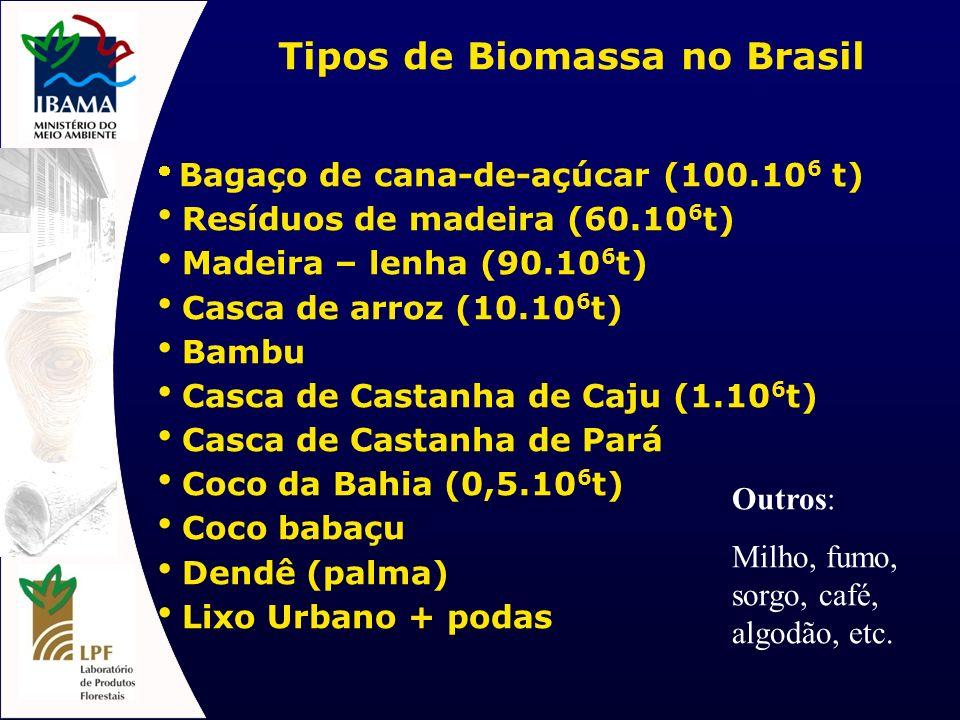 Tipos de Biomassa no Brasil