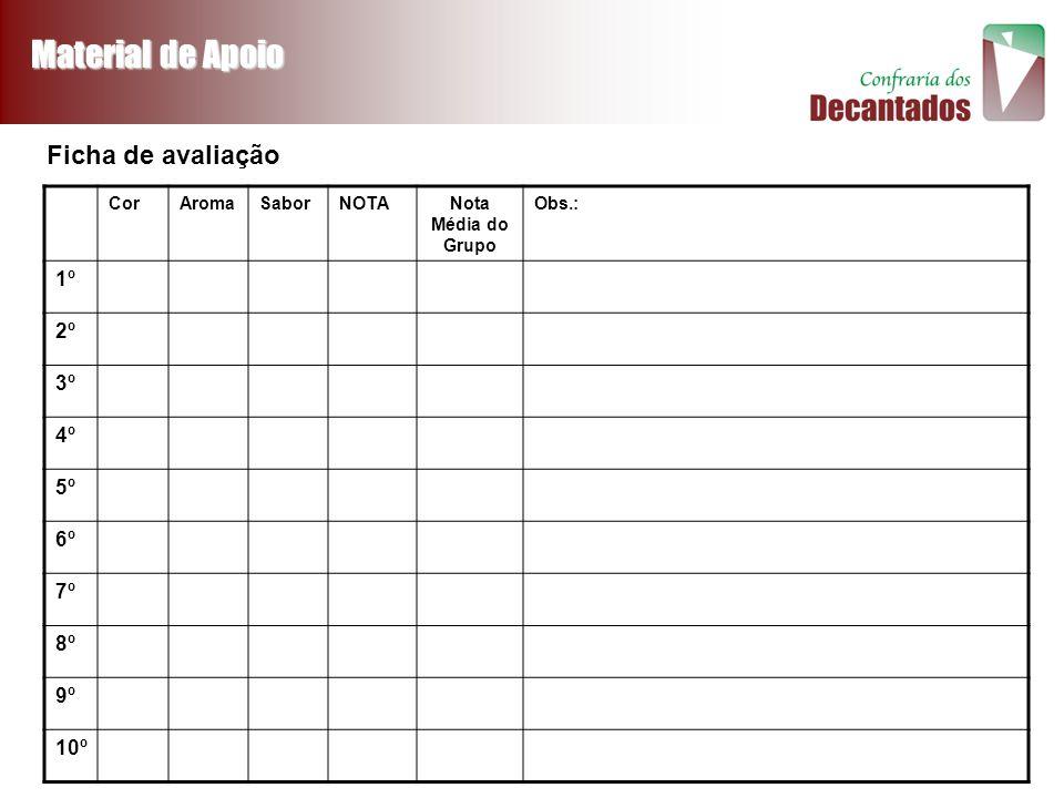 Material de Apoio Ficha de avaliação 1º 2º 3º 4º 5º 6º 7º 8º 9º 10º