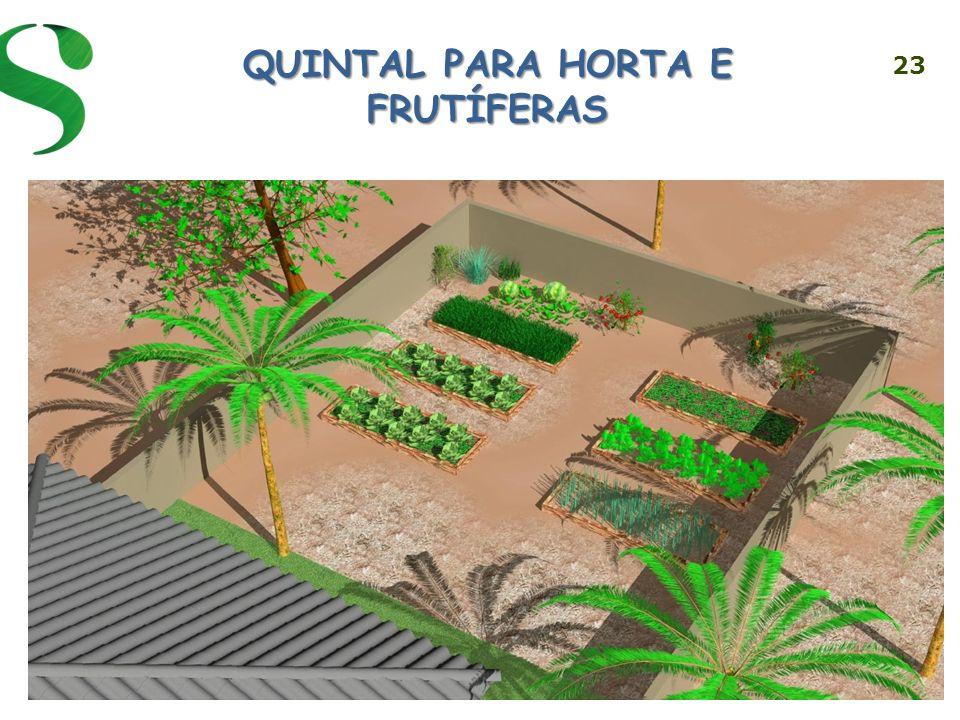 QUINTAL PARA HORTA E FRUTÍFERAS