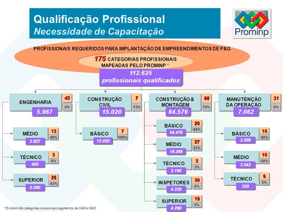 Qualificação Profissional Necessidade de Capacitação