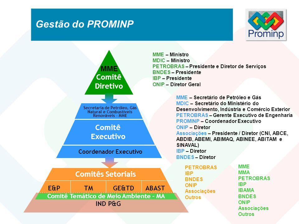Gestão do PROMINP MME Comitê Diretivo Comitê Executivo