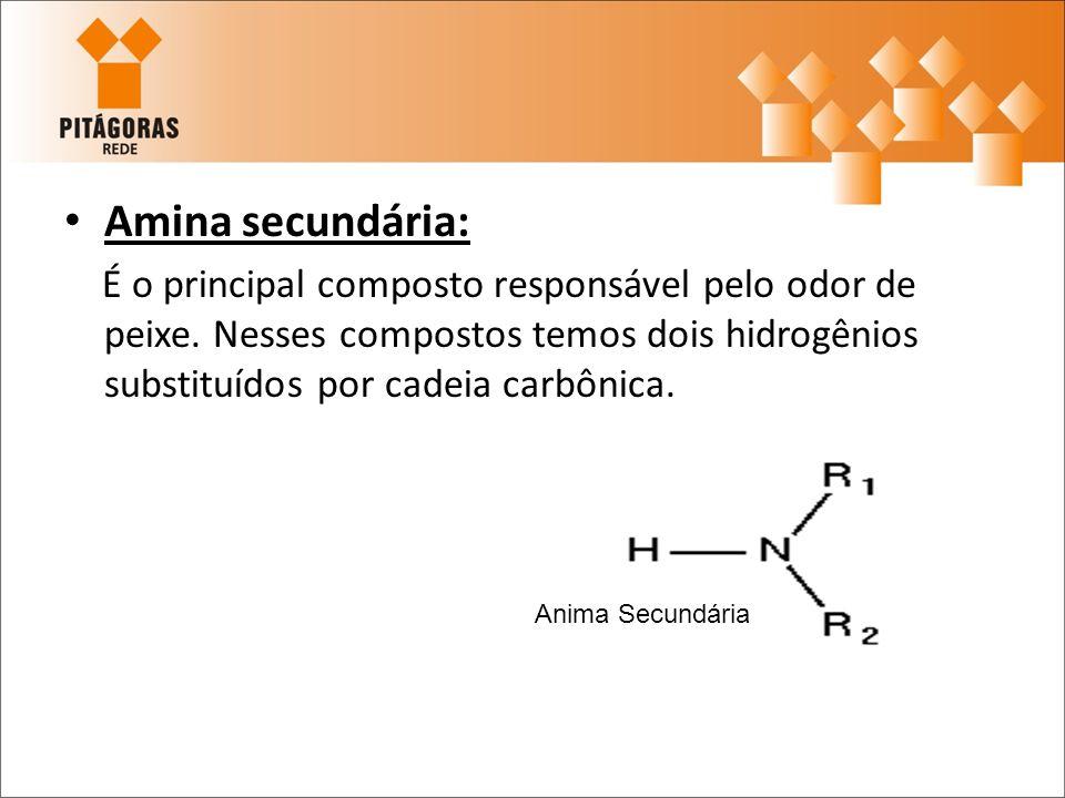 Amina secundária:É o principal composto responsável pelo odor de peixe. Nesses compostos temos dois hidrogênios substituídos por cadeia carbônica.