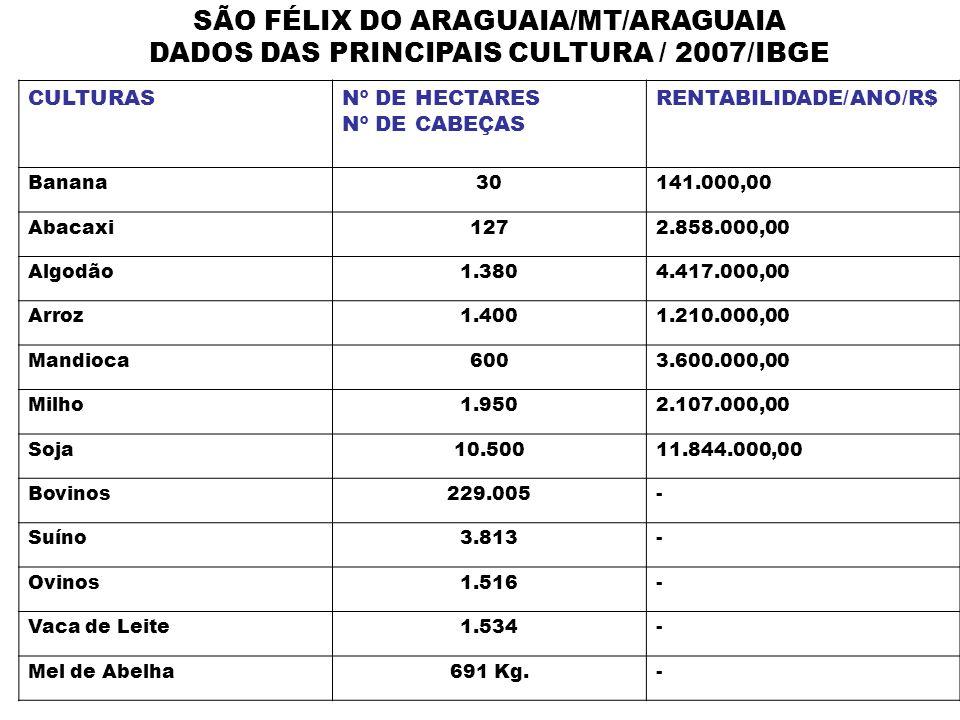 SÃO FÉLIX DO ARAGUAIA/MT/ARAGUAIA