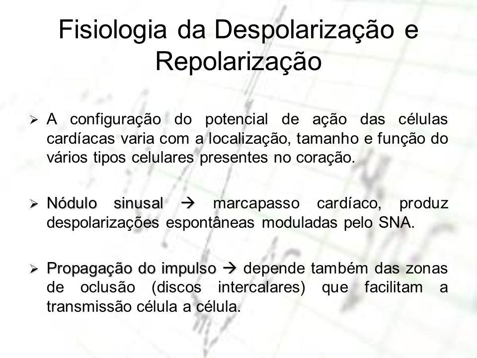 Fisiologia da Despolarização e Repolarização