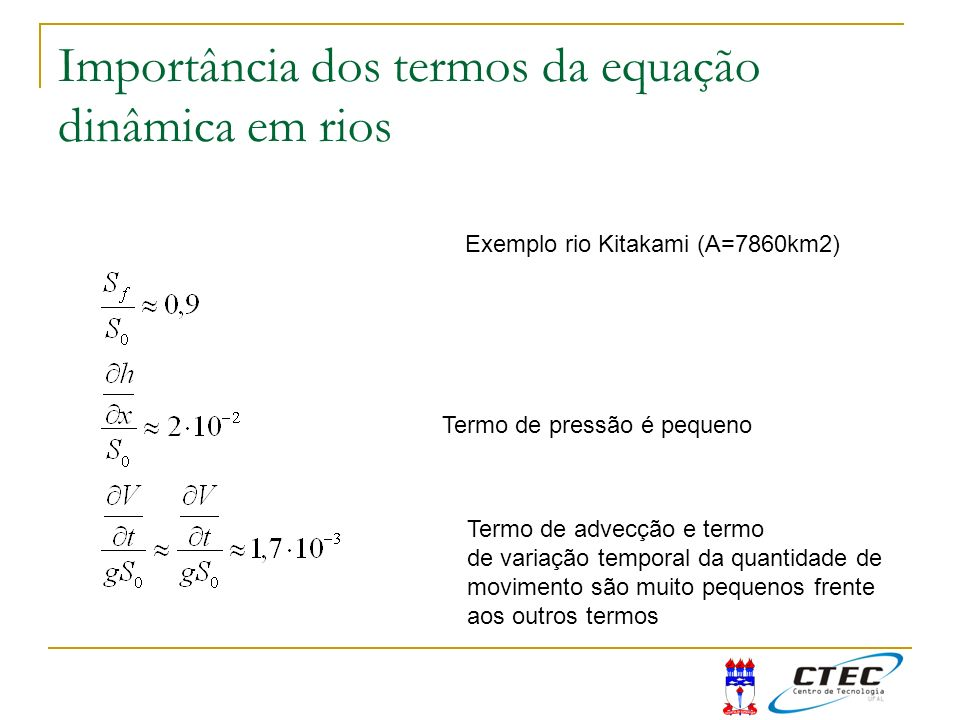 Importância dos termos da equação dinâmica em rios