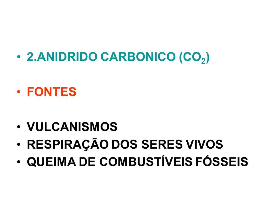 2.ANIDRIDO CARBONICO (CO2)