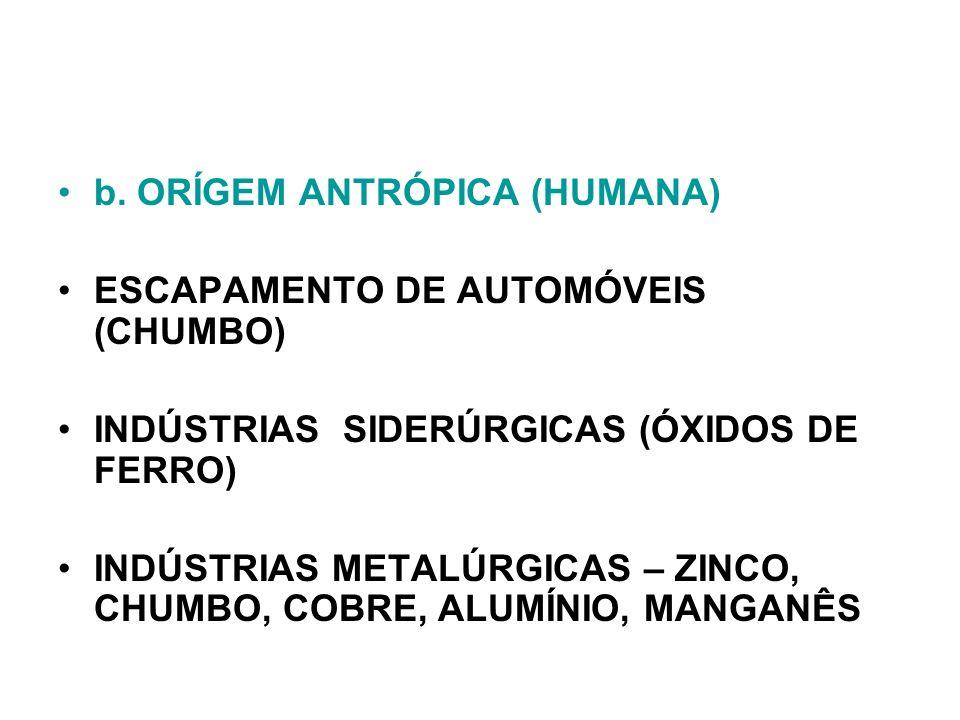 b. ORÍGEM ANTRÓPICA (HUMANA)