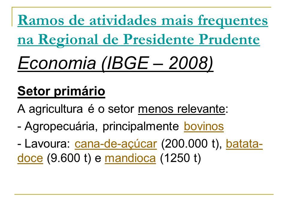 Ramos de atividades mais frequentes na Regional de Presidente Prudente