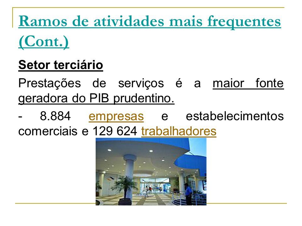 Ramos de atividades mais frequentes (Cont.)