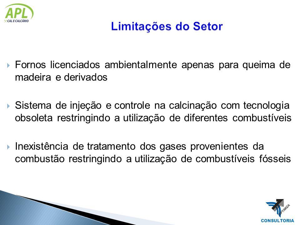 Limitações do Setor Fornos licenciados ambientalmente apenas para queima de madeira e derivados.