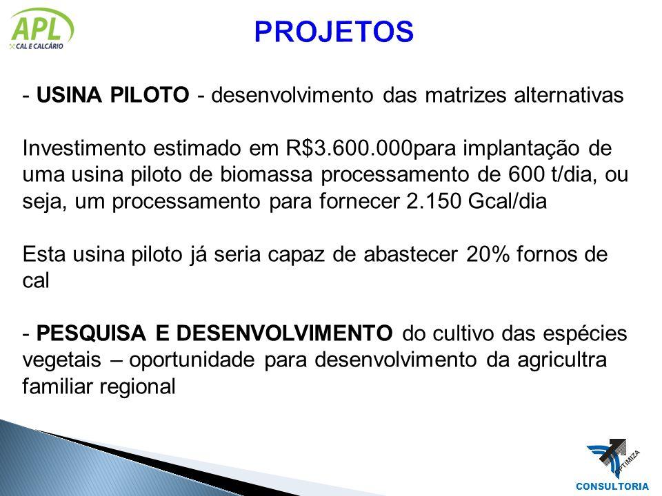 PROJETOS USINA PILOTO - desenvolvimento das matrizes alternativas