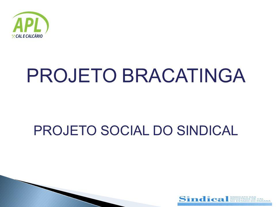 PROJETO SOCIAL DO SINDICAL