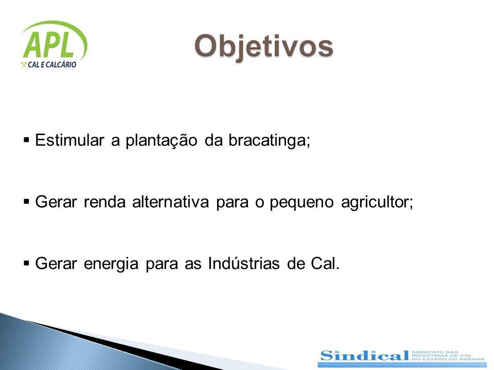 Objetivos Estimular a plantação da bracatinga;