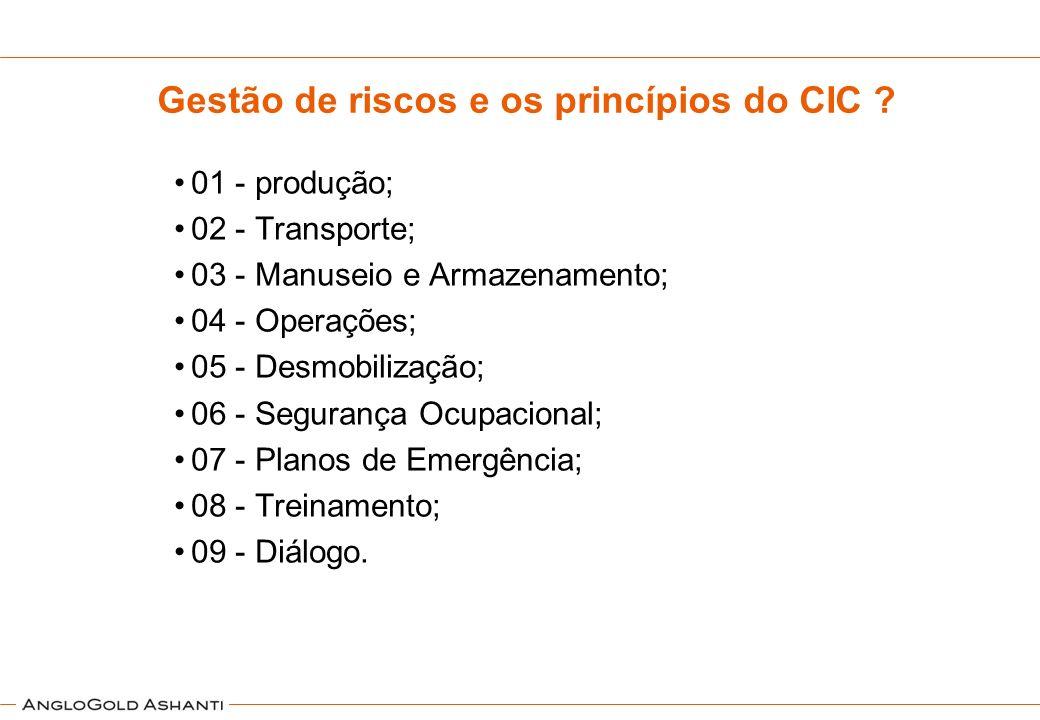 Gestão de riscos e os princípios do CIC